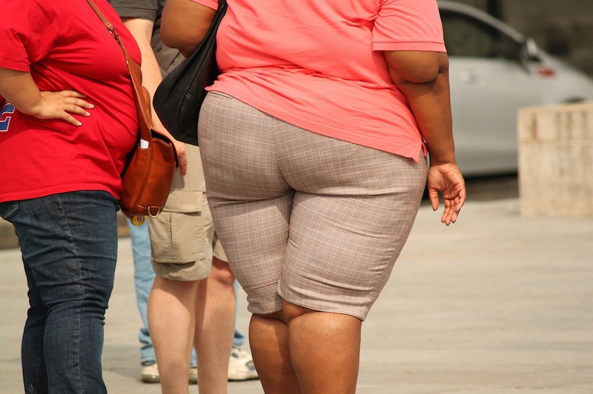 'Women of minority sexual orientation are disproportionately affected by the obesity epidemic.'