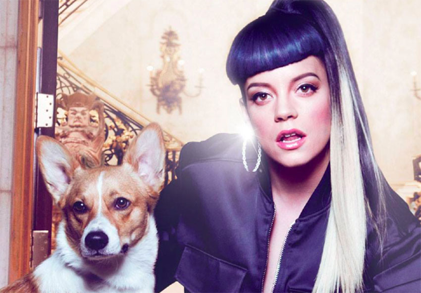 Lily Allen accused of being homophobic