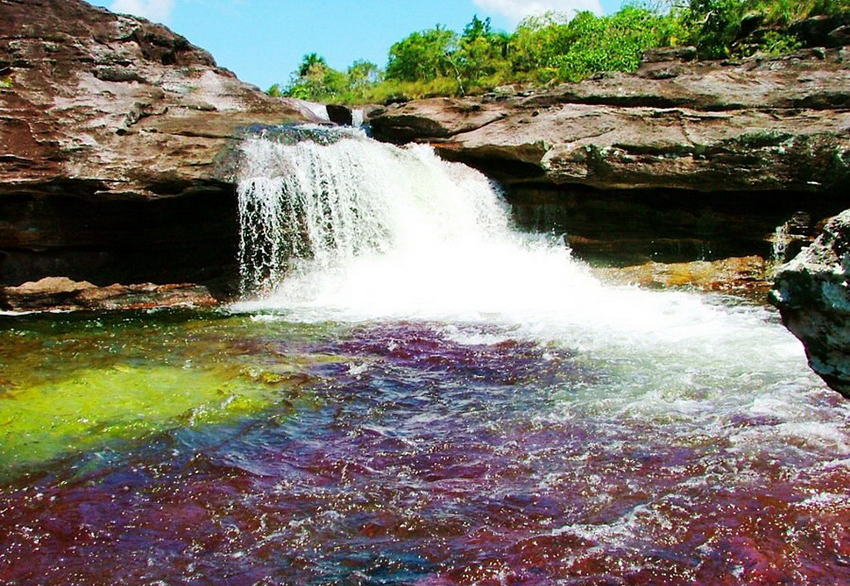 Caño Cristales, the rainbow river in Colombia.