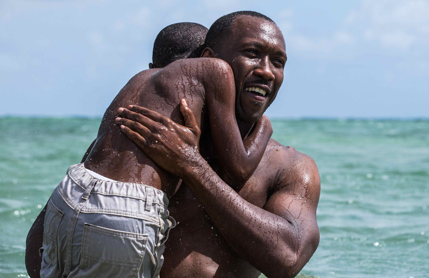 Moonlight won the 2017 Academy Award for Best Picture