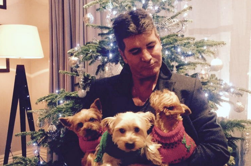 Simon Cowell posted this Twitter pic of he and his pups in Christmas 2015