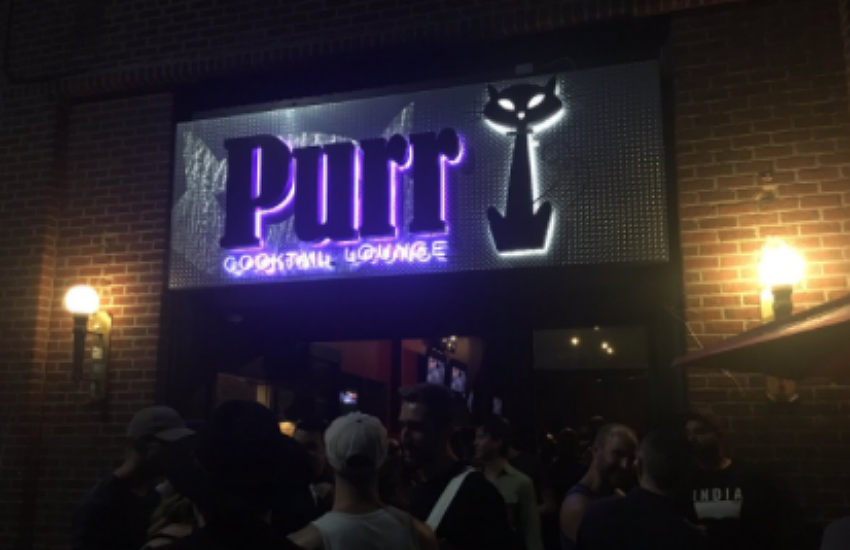 Purr was busy on its last night open (19 July)