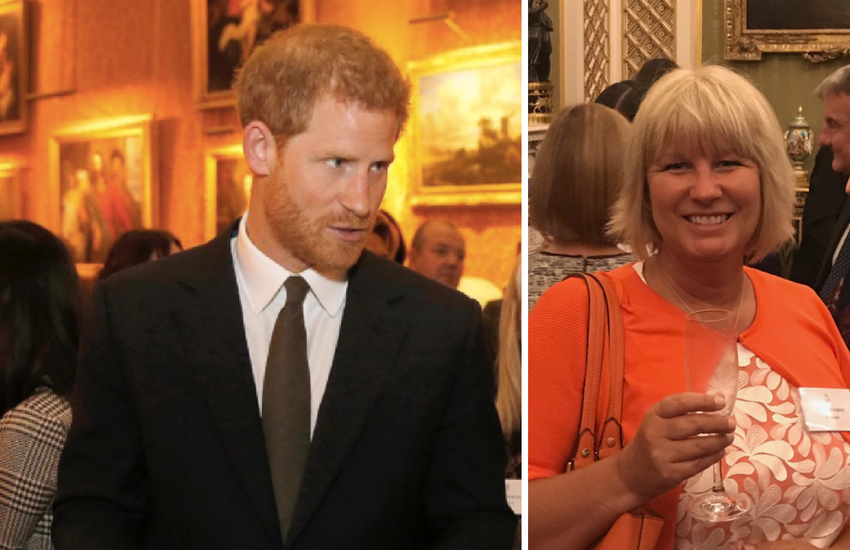 Prince harry calls Mermaids amazing at mental health reception