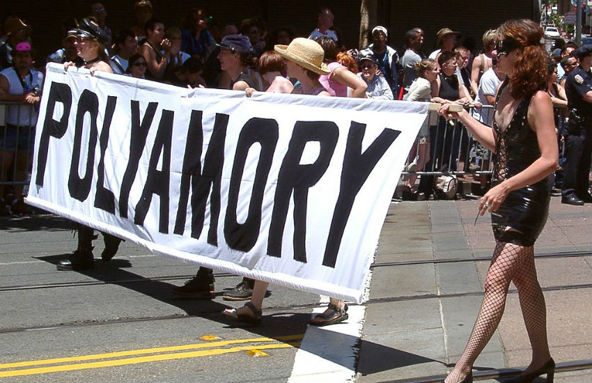 Polyamory Pride taking part in San Francisco Pride 2004