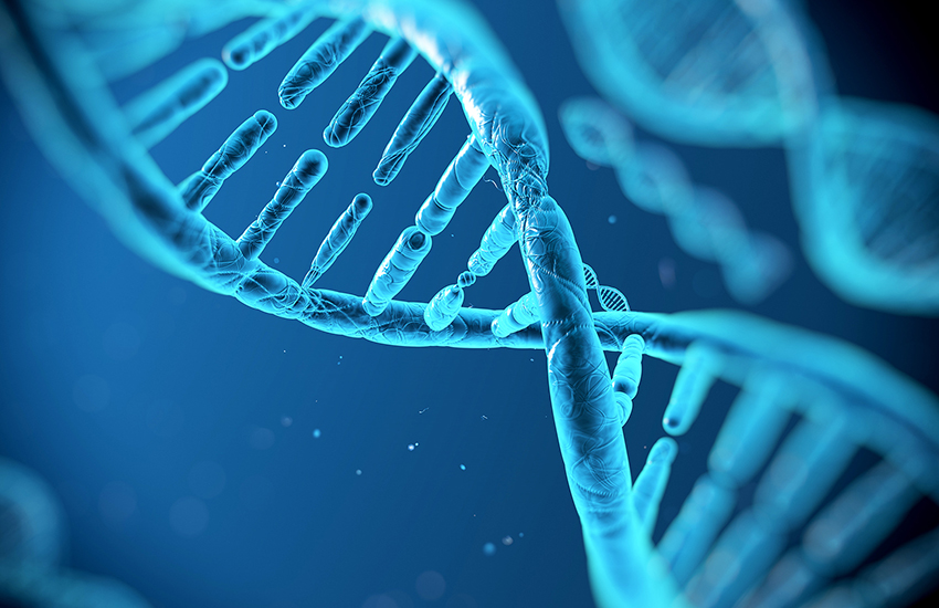 Scientists find sexuality is linked to DNA