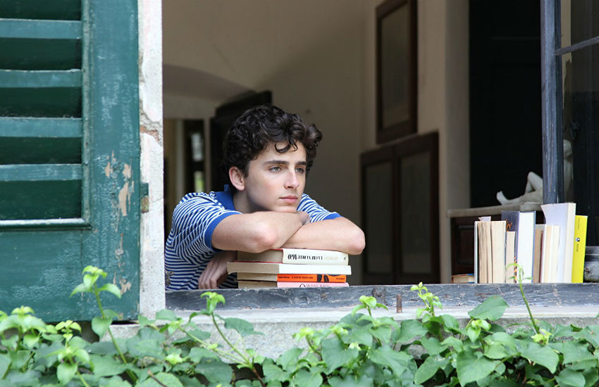 Timothee Chalamet looking out of window in Call Me By Your Name