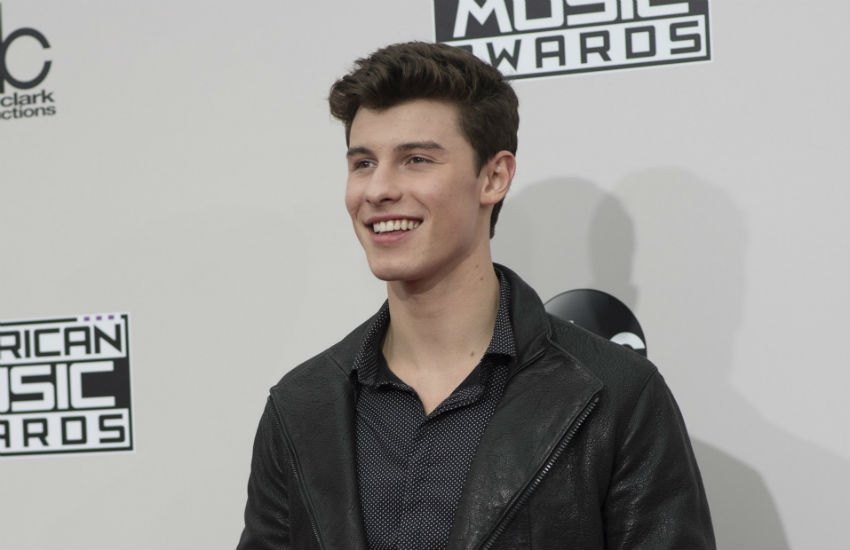 Shawn Mendes at the American Music Awards