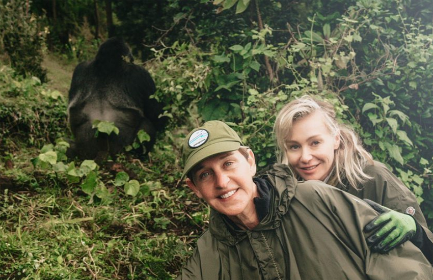 A gorilla. Ellen and Portia