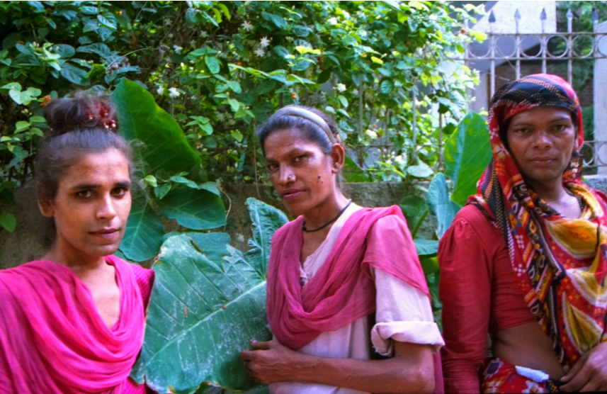 three trans women in traditional indian clothes stand in front of trees looking at the camera, they are not smiling