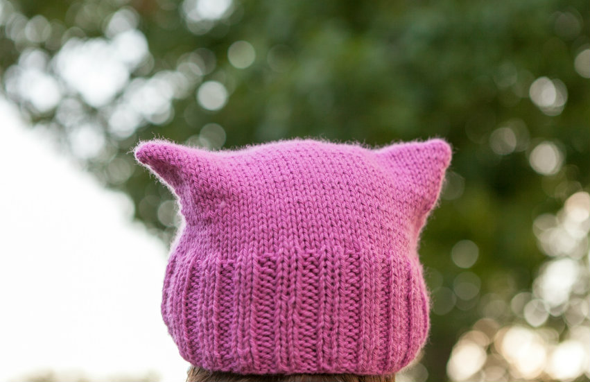 The famous pussy hat