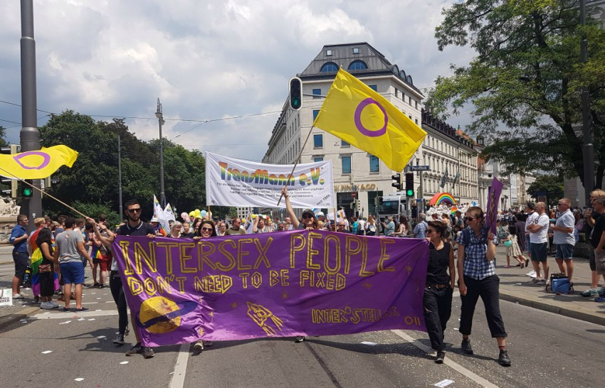 intersex people marching at pride with purple and yellow flags
