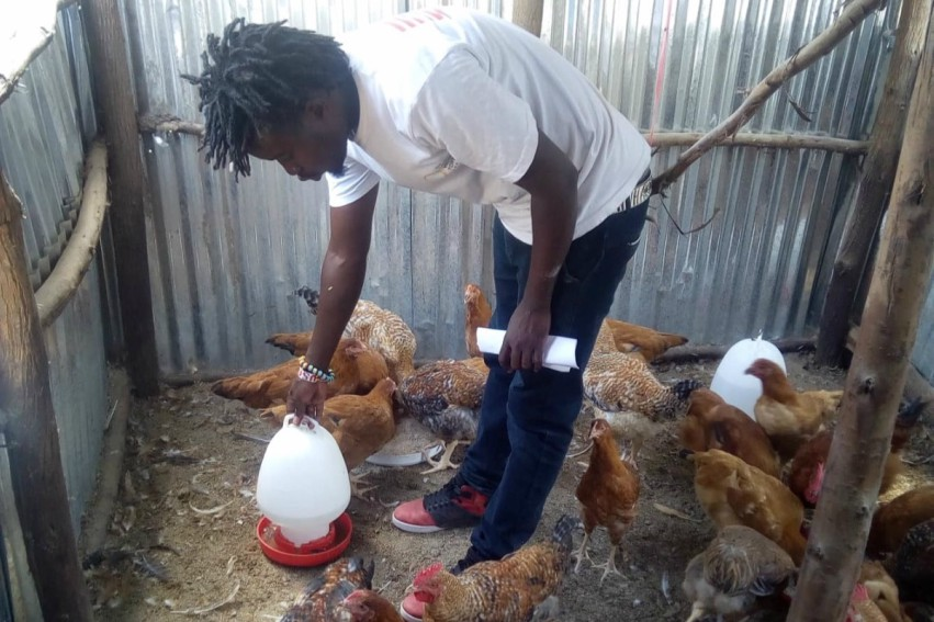 a man pouring water in a pen surrounded by chickens