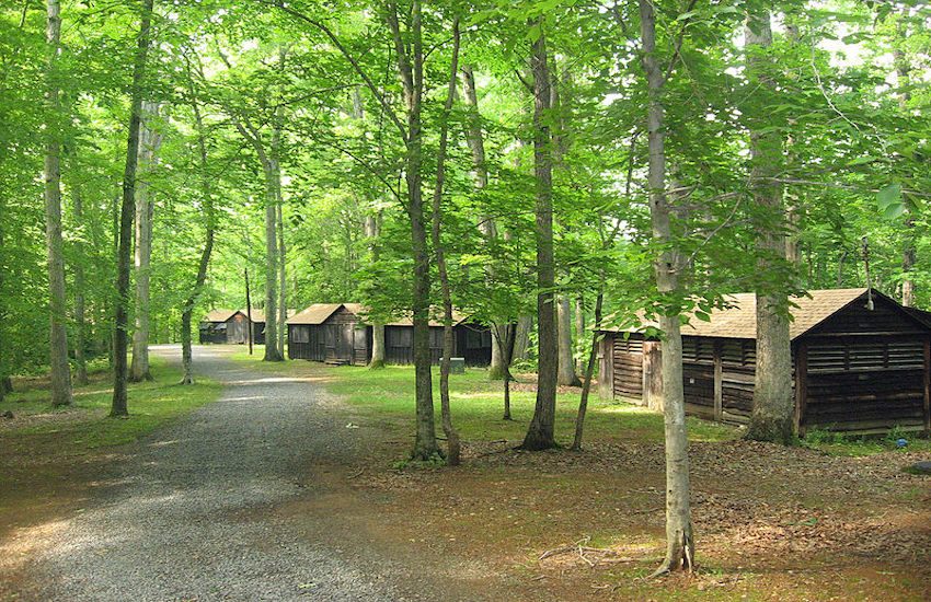 Camp Tawonga will be trying out all-gender cabins for a session this summer