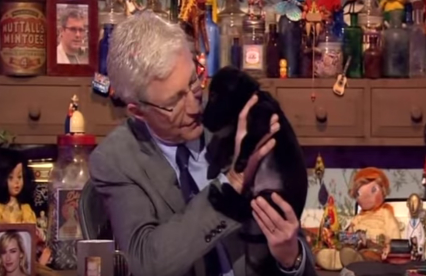 Paul O Grady dog bullseye dies