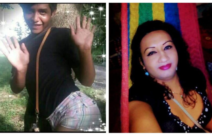 two photos. on the left is a trans woman standing and waving at the camera in a silly pose. the photo on the right shows a trans woman with shoulder length brown hair and wearing pink lipstick