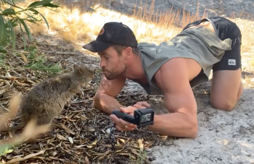 Chris Hemsworth and quokka | Photo: Chris Hemsworth