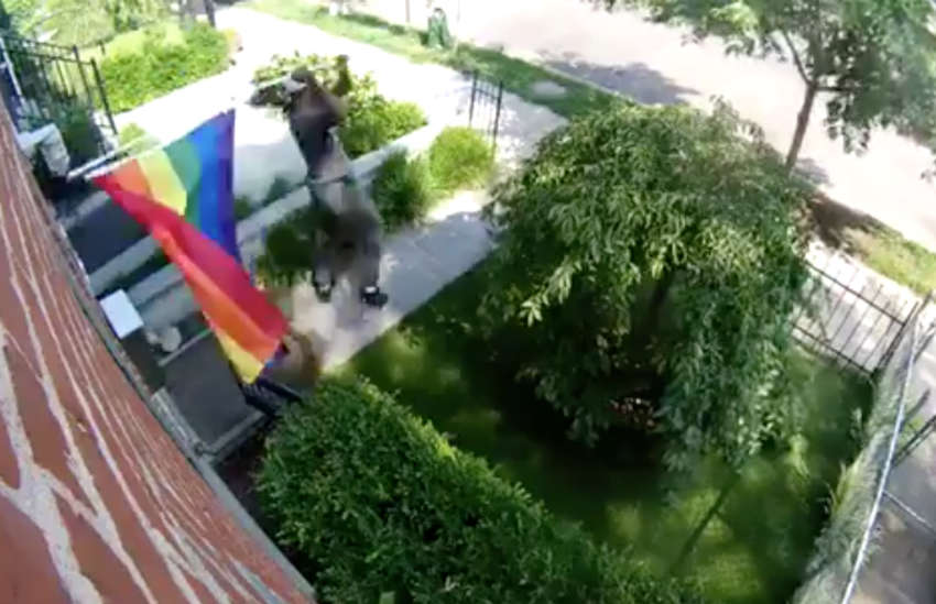 man seen tearing down a rainbow flag in Washington DC