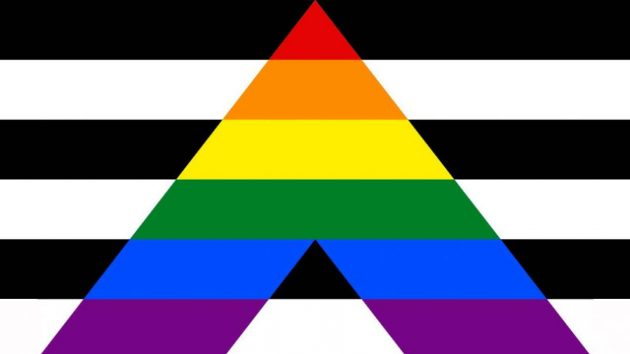 Ally Pride Flag/ pride flags/LGBTQ+ Pride Flags And What They Mean