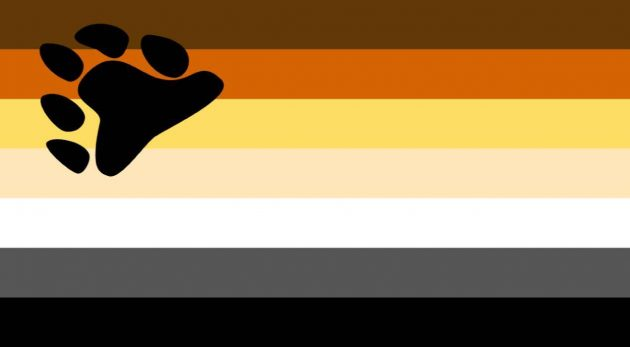 Bear Pride Flag/ pride flags/LGBTQ+ Pride Flags And What They Mean