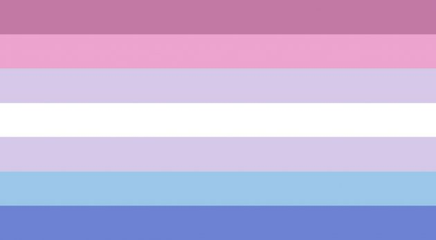 Bigender Pride Flag/ pride flags/LGBTQ+ Pride Flags And What They Mean