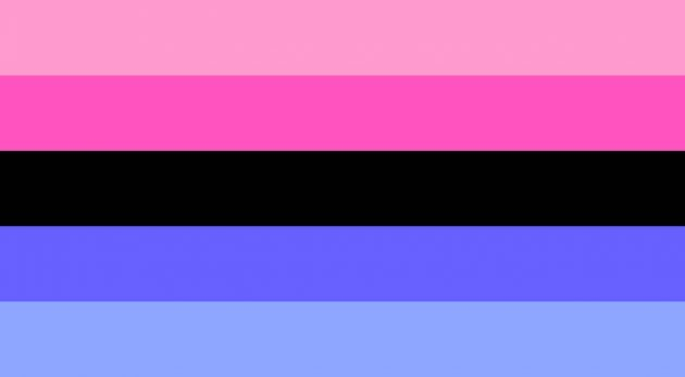 Omnisexual Pride Flag/ pride flags/ LGBTQ+ Pride Flags And What They Mean