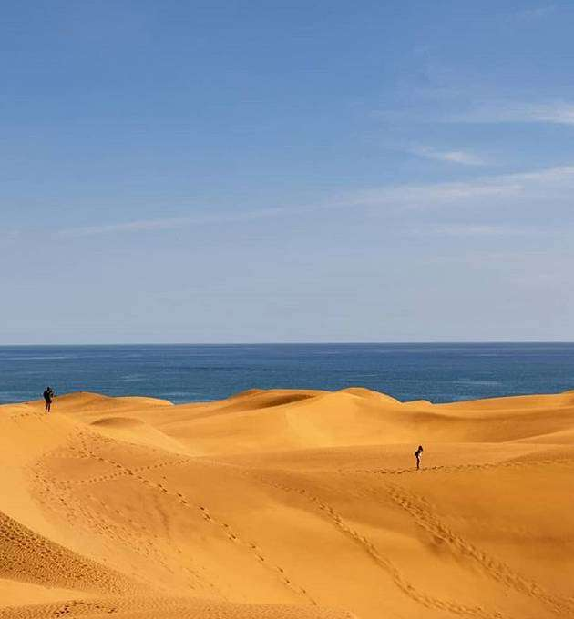The dune along the beaches in Gran Canaria