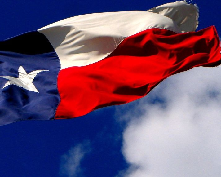 The Texas GOP approves a party platform that implies half of the state's residents are gay